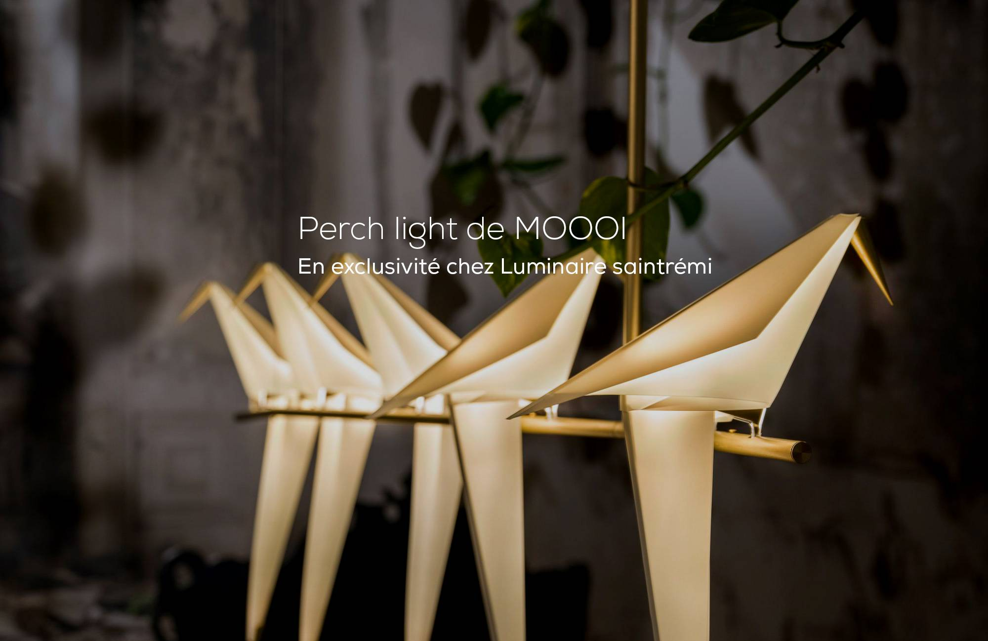 Perch Light  de MOOOI